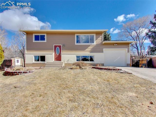 4150 Sod House Trail, Colorado Springs, CO 80917 (#2911893) :: The Peak Properties Group