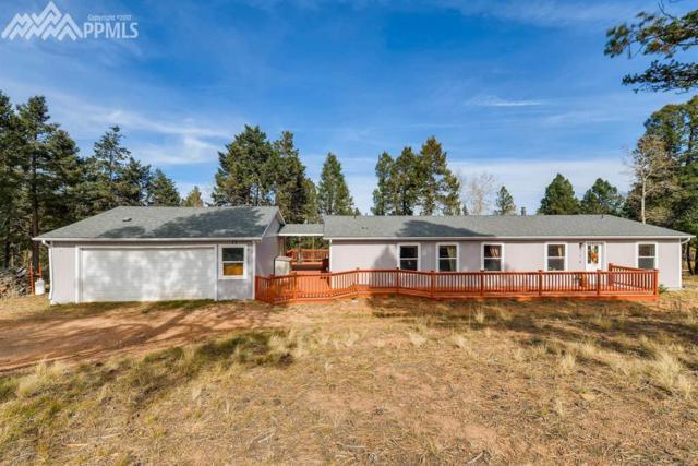 317 Deer Ridge Trail, Divide, CO 80814 (#2913110) :: 8z Real Estate