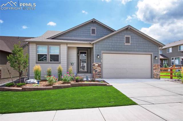2381 Pelican Bay Drive, Monument, CO 80132 (#2913661) :: 8z Real Estate