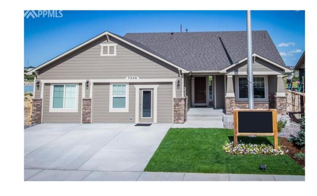 7045 Thorn Brush Way, Colorado Springs, CO 80923 (#2918986) :: 8z Real Estate