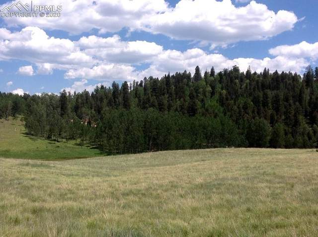 3547 County Road 100, Guffey, CO 80820 (#2919449) :: Action Team Realty