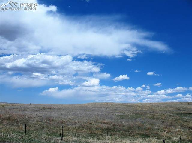 15445 Mcclelland Road, Calhan, CO 80808 (#2929437) :: Hudson Stonegate Team