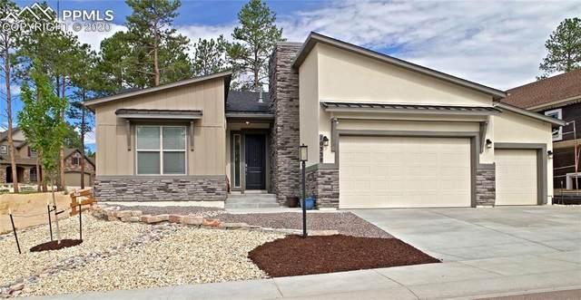 16338 Corkbark Terrace, Monument, CO 80132 (#2938428) :: The Treasure Davis Team