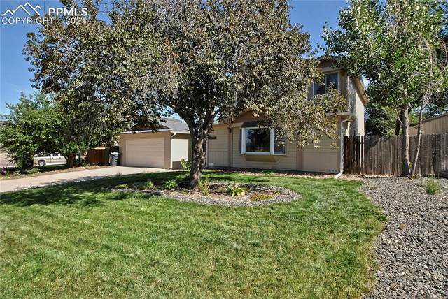 6915 Crazy Horse Circle, Colorado Springs, CO 80915 (#2940365) :: Tommy Daly Home Team