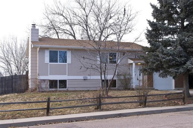 7260 Goldfield Drive, Colorado Springs, CO 80911 (#2943061) :: 8z Real Estate