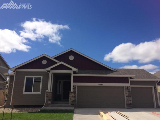 10547 Desert Bloom Way, Colorado Springs, CO 80925 (#2944981) :: 8z Real Estate