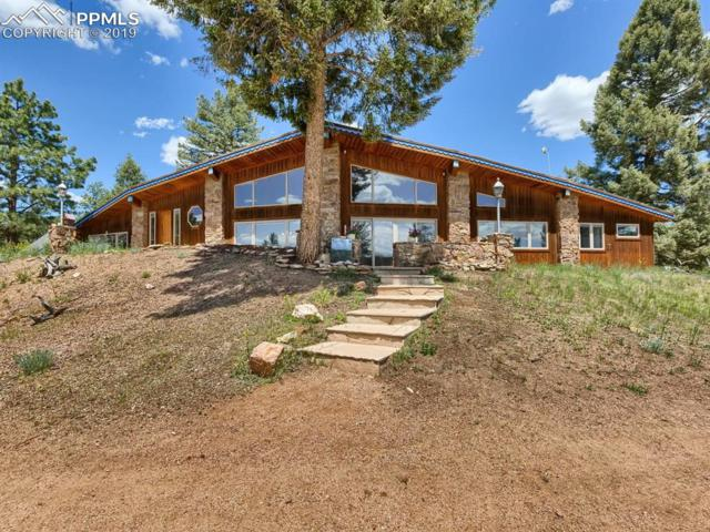 47 Fossil Drive, Florissant, CO 80816 (#2949188) :: Jason Daniels & Associates at RE/MAX Millennium