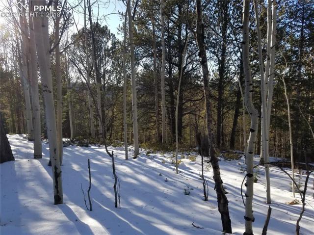 741 Timber Ridge Road, Divide, CO 80814 (#2949435) :: The Peak Properties Group