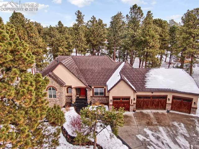 13835 Hildenshire Place, Colorado Springs, CO 80908 (#2961499) :: 8z Real Estate