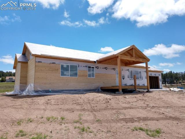 608 High Pasture Road, Florissant, CO 80816 (#2963938) :: Action Team Realty