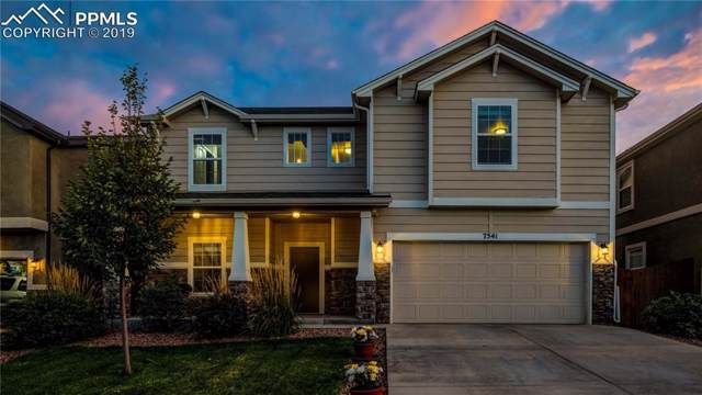 7541 Calm Oasis Place, Colorado Springs, CO 80922 (#2964825) :: Tommy Daly Home Team