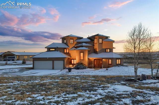 19990 Bright Wing Trail, Colorado Springs, CO 80908 (#2965563) :: Action Team Realty