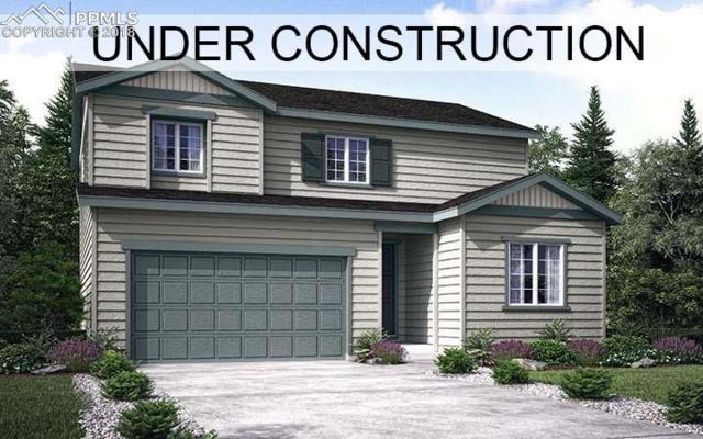 11024 Hayloft Street, Parker, CO 80134 (#2966083) :: Venterra Real Estate LLC