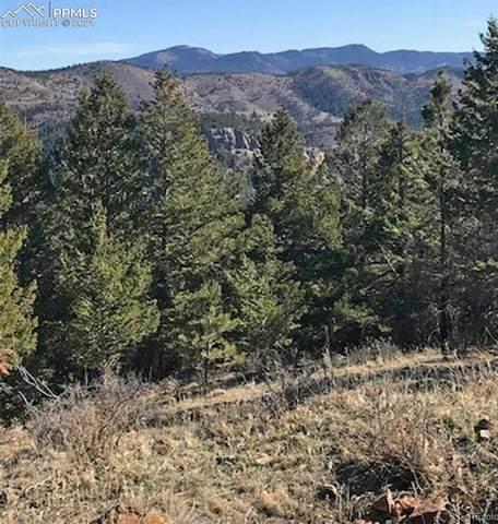0000 Hidden Wilderness Road, Idaho Springs, CO 80452 (#2966418) :: CC Signature Group