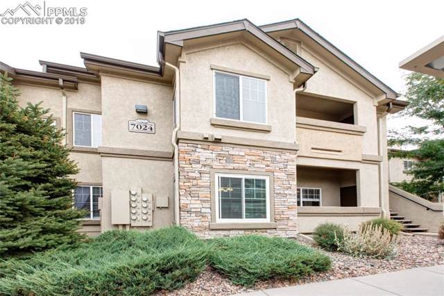 7024 Ash Creek Heights #204, Colorado Springs, CO 80922 (#2971833) :: Tommy Daly Home Team