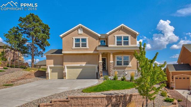 19733 Serenity Springs Point, Monument, CO 80913 (#2978021) :: 8z Real Estate