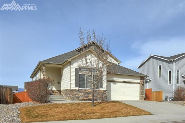 4862 Haiti Way, Colorado Springs, CO 80911 (#2978230) :: 8z Real Estate