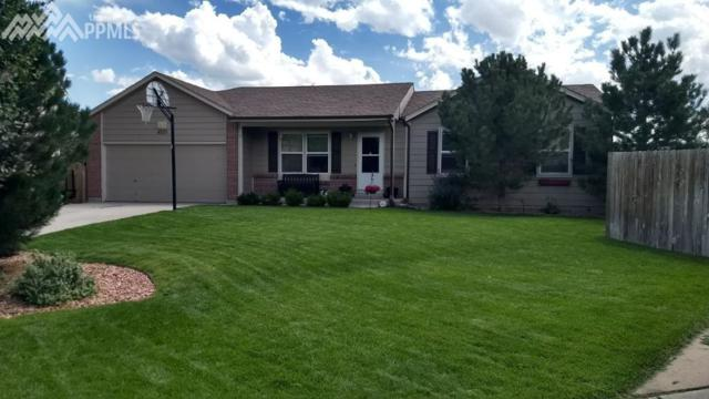 4520 Cutting Horse Place, Colorado Springs, CO 80922 (#2980119) :: RE/MAX Advantage
