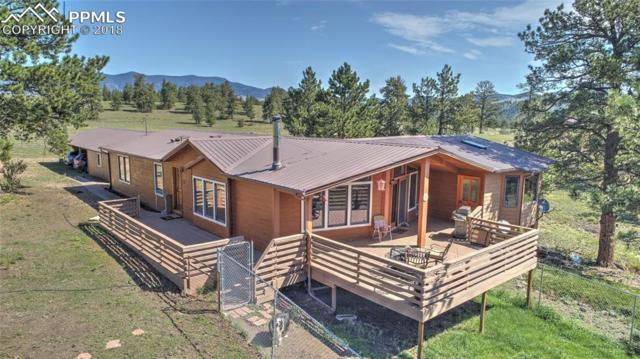 378 Cougar Lane, Guffey, CO 80820 (#2981884) :: Action Team Realty