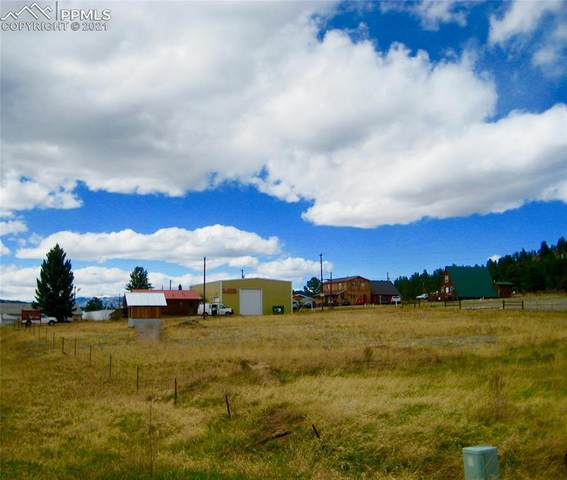 TBD Highway 24 Highway, Lake George, CO 80827 (#2986888) :: The Treasure Davis Team | eXp Realty