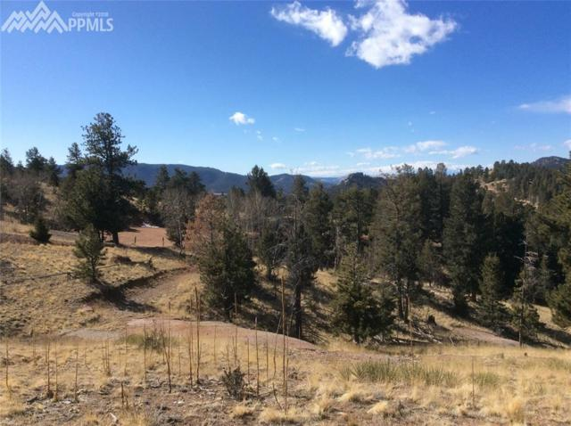 43 Snowshoe Way, Florissant, CO 80816 (#2987167) :: The Treasure Davis Team