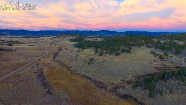 2335 Longbow Drive, Como, CO 80432 (#2990143) :: The Harling Team @ Homesmart Realty Group