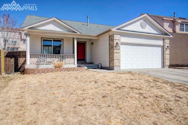 7020 Hillock Drive, Colorado Springs, CO 80922 (#2991471) :: RE/MAX Advantage
