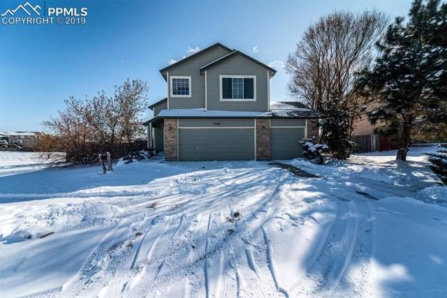 5337 Hawk Springs Drive, Colorado Springs, CO 80923 (#2992540) :: Tommy Daly Home Team