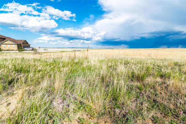 13665 Irish Hunter Trail, Elbert, CO 80106 (#2994350) :: 8z Real Estate