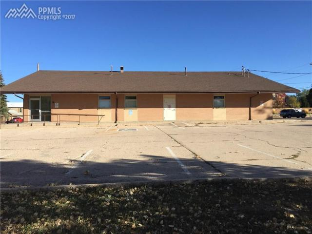 192 N Front Street, Monument, CO 80132 (#2996702) :: 8z Real Estate
