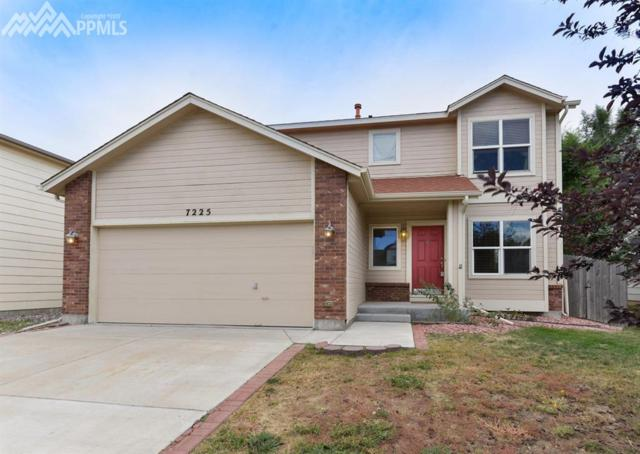 7225 Moss Bluff Court, Fountain, CO 80817 (#2998745) :: 8z Real Estate