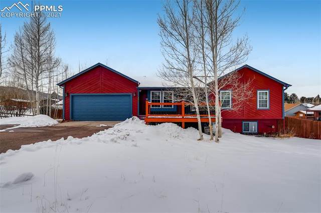Woodland Park, CO 80863 :: Venterra Real Estate LLC