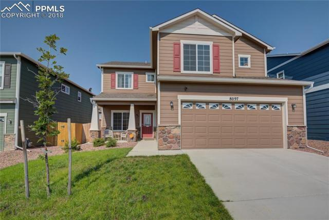 8097 Hardwood Circle, Colorado Springs, CO 80908 (#3002391) :: The Treasure Davis Team