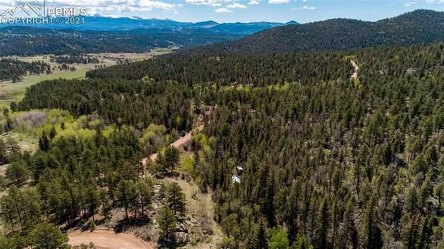 1248 Park Ridge Drive, Lake George, CO 80827 (#3004674) :: Compass Colorado Realty
