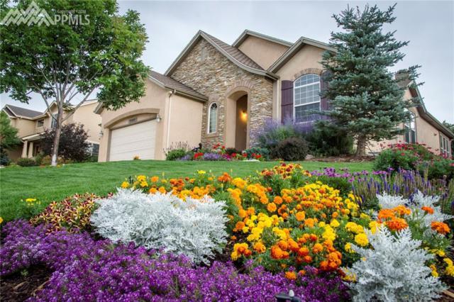13933 Windy Oaks Road, Colorado Springs, CO 80921 (#3009088) :: The Peak Properties Group