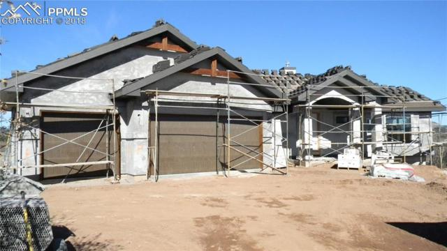 803 Forest View Way, Monument, CO 80132 (#3009381) :: 8z Real Estate