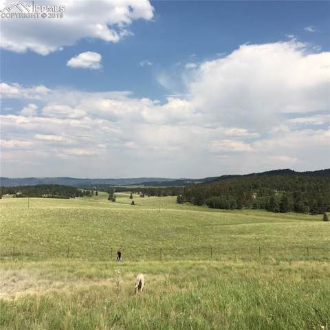 254 County 25 Road, Divide, CO 80814 (#3011177) :: Fisk Team, RE/MAX Properties, Inc.