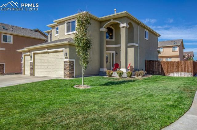 6685 Alliance Loop, Colorado Springs, CO 80925 (#3013889) :: The Kibler Group