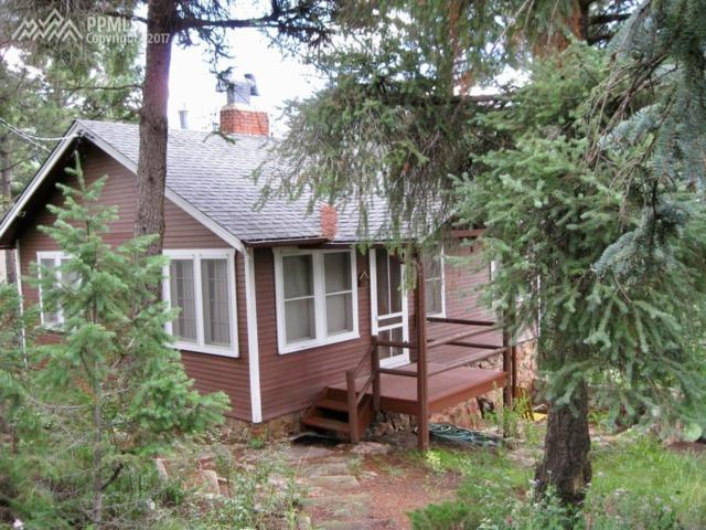 9250 Shoshone Road, Cascade, CO 80809 (#3014648) :: The Dunfee Group - Keller Williams Partners Realty