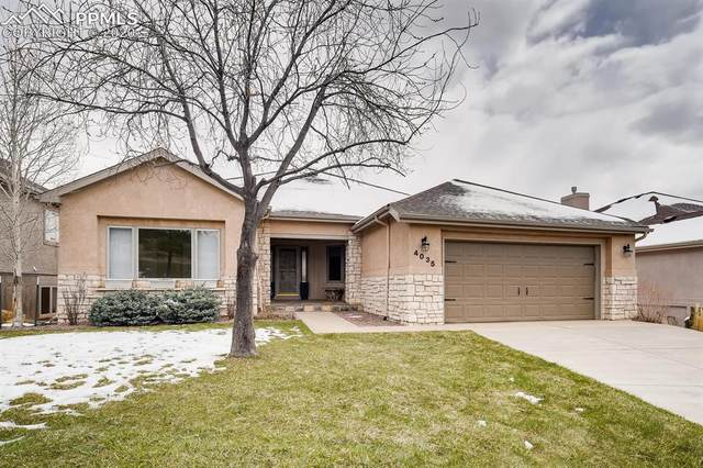 4035 Ramshorn Point, Colorado Springs, CO 80904 (#3014671) :: The Daniels Team