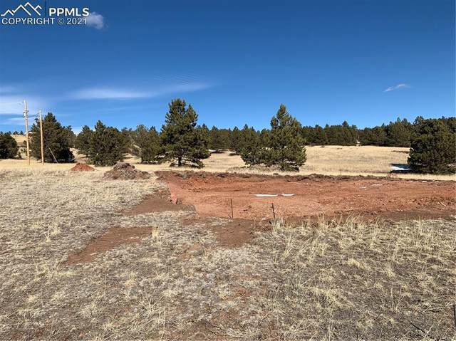 47 Crescent Drive, Florissant, CO 80816 (#3020237) :: The Scott Futa Home Team