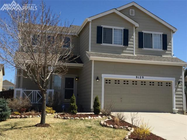 9129 Christy Court, Colorado Springs, CO 80951 (#3021801) :: RE/MAX Advantage