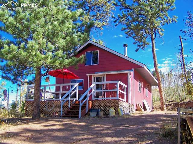 3162 Lakeview Drive, Florissant, CO 80816 (#3022211) :: The Treasure Davis Team