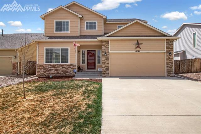 6238 Elk Bench Trail, Colorado Springs, CO 80925 (#3024466) :: 8z Real Estate