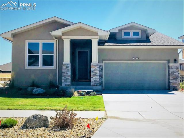 5859 Thurber Drive, Colorado Springs, CO 80924 (#3027572) :: 8z Real Estate