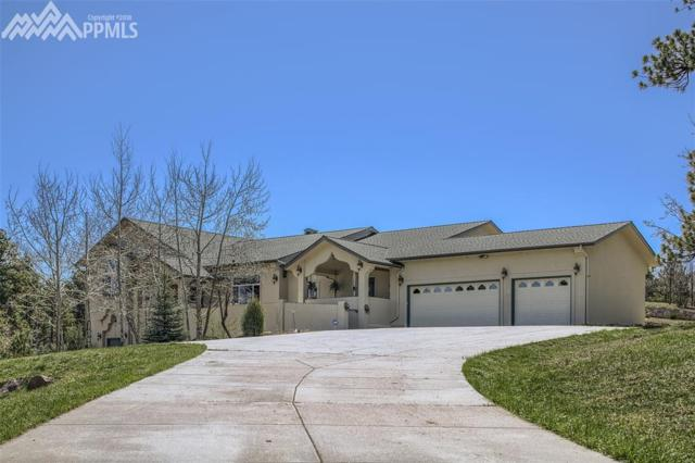 8376 Sugarloaf Road, Larkspur, CO 80118 (#3027846) :: The Treasure Davis Team