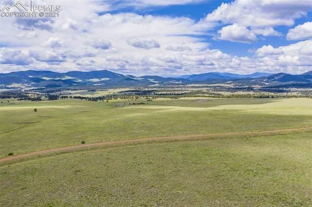 301 Lakeview Trail, Guffey, CO 80820 (#3027911) :: Symbio Denver