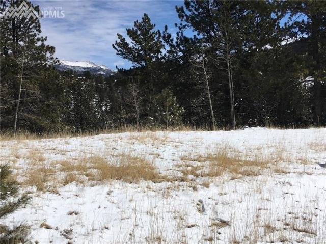 66 May Queen Way, Cripple Creek, CO 80813 (#3029151) :: The Peak Properties Group