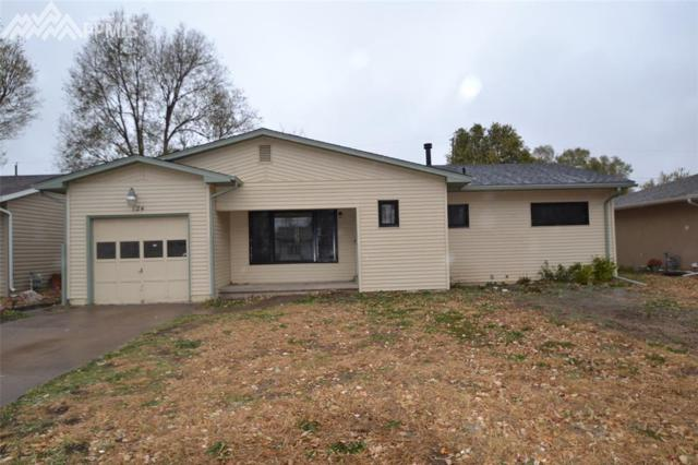 124 Davie Drive, Colorado Springs, CO 80911 (#3029828) :: The Dunfee Group - Keller Williams Partners Realty