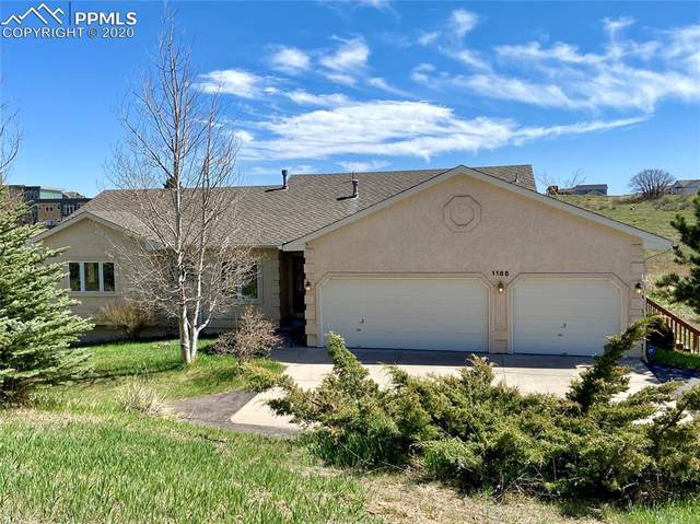 1185 S Park Drive, Monument, CO 80132 (#3030490) :: Action Team Realty